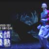 【情熱大陸】ドットカラーエージェント所属の森弘一郎さんが出演しました!